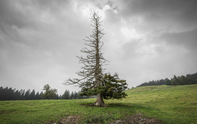 Landschaftsfotografie von Regentaucher Fotografie
