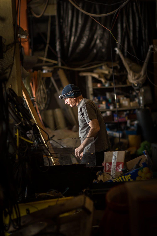 Regentaucher Portraitfotografie   Jim Whiting